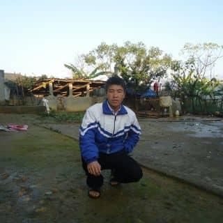 Nkauj Hmoob của nkaujsua tại Shop online, Huyện Mường Tè, Lai Châu - 2961474