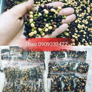 Nước đậu đen của thaonguyen236 tại Hồ Chí Minh - 2952793