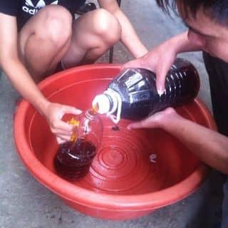 Nước mắm của thuyvu72 tại 7 Tháng 5, Nam Thanh, Thành Phố Điện Biên Phủ, Điện Biên - 1117625