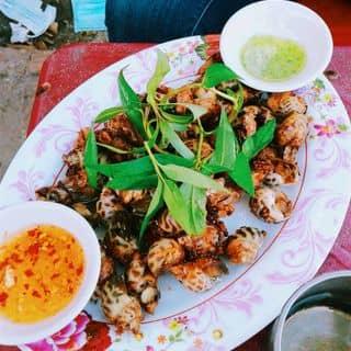 Ốc hương xào tỏi của zankute48 tại Quảng trường 1/4 , Thành Phố Tuy Hòa, Phú Yên - 1691461