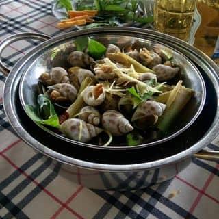 Ốc hươu hấp xả  của anhngoc_3 tại 34 Võ Thị Sáu, Thành Phố Biên Hòa, Đồng Nai - 398683