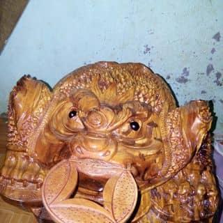 Ông cóc tai lộc của vihoaphuong tại Đắk Nông - 1472296
