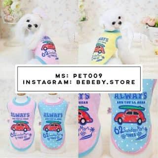 Pet cưng và áo xinh của bebeby.store tại Hồ Chí Minh - 2698257