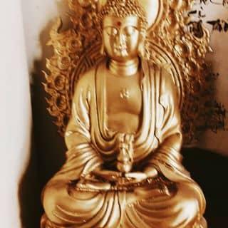 Phật của nga116381 tại Trần Hưng Đạo, Hue, Thừa Thiên Huế - 1703609