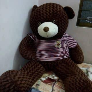 Pingsu gấu teddy của eiuanh tại Đối Diện Bưu Điện Ninh Hoà,  Trần Quý Cáp, Huyện Ninh Hòa, Khánh Hòa - 2378712