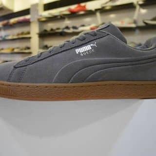 Puma chính hãng ❤️ của quyenlinh789 tại Nhà máy Sứ, Kiot 6 Phạm Ngũ Lão, Thành Phố Hải Dương, Hải Dương - 941562