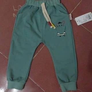 Quần áo trẻ em của nguyenhue209 tại Vĩnh Yên, Thành Phố Vĩnh Yên, Vĩnh Phúc - 1234869