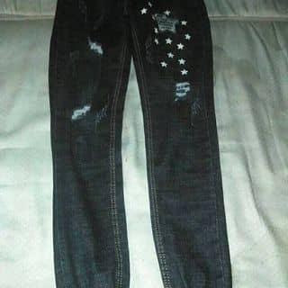 Quần jogger jeans của veronicastu tại 567 Hà Lầm,  Hà Trung, Thành Phố Hạ Long, Quảng Ninh - 2648119