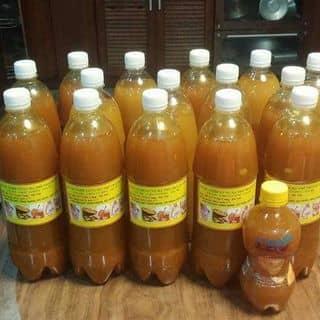 Rượu nghệ gừng hạ thổ của phuthuy39 tại Phú Thọ - 2165977