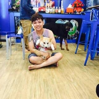 Saito pet coffee 76 trần tống của alasdung tại Đà Nẵng - 1437601