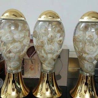 Sâm tỉa hoa ngâm rượu hq sdt liên hệ 01214568800 hoặc 01688928648 của lehoa251 tại Hải Dương - 2427717