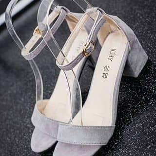 Sandal của quantrung16 tại Hòa Bình - 2714241