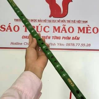 Sáo trúc của quocchoangg tại Quảng Bình - 1155621