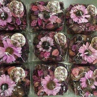 Sáp hoa khô hang thái nhé kh của dumui tại A101 Hùng Vương, Thành Phố Phan Thiết, Bình Thuận - 1268166