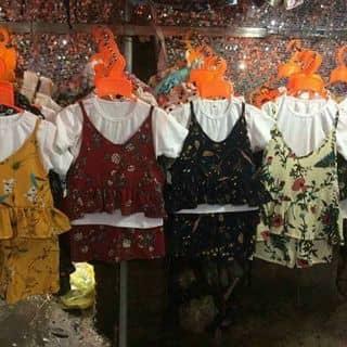 Set 3 chi tiết áo pull. Áo dây. Quần đùi của ngotieunhi tại Thừa Thiên Huế - 3018782
