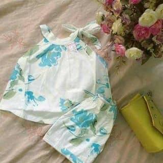 Sét áo xinh cho bé của anhpe8 tại 300 Trường Chinh, Thành Phố Nam Định, Nam Định - 2664321