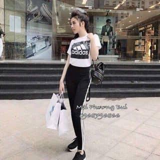 Set thể thao có tay Adidas của miestore tại 182/6 Nguyễn Thượng Hiền, phường 5, Quận Phú Nhuận, Hồ Chí Minh - 3157750