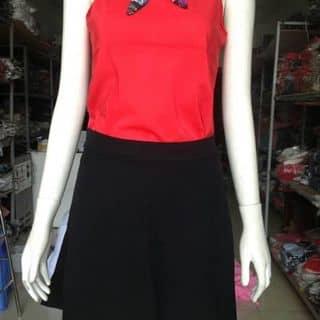Sét váy + áo voan của vodung24 tại Trường Đại học Tài chính - Kế toán, Huyện Tư Nghĩa, Quảng Ngãi - 925639