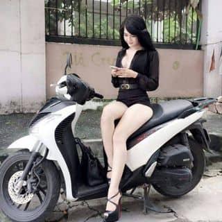 Sh của honhohung tại Phú Yên - 2430604