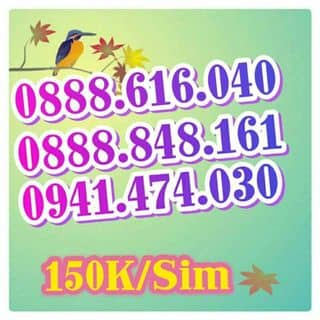 Sim vjnaphone của trunghoang68 tại Bạc Liêu - 2239441