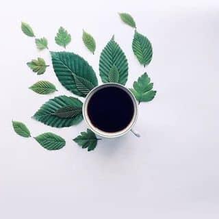 Skin coffee của nguyentho188 tại Hồ Chí Minh - 2915269