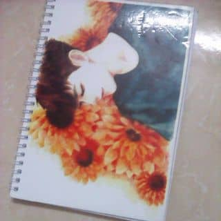 Sổ vẽ Zitao của luevian tại Thái Bình - 3158495