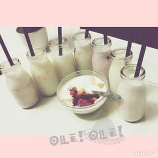 Sữa chua Cô Béo của tranquynh262 tại Kiốt 1+2+3 Khu Tự Xây Đường Kênh Liêm, Thành Phố Hạ Long, Quảng Ninh - 599002