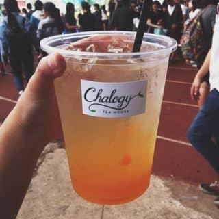 Chalogy Tea House - Nguyễn Du