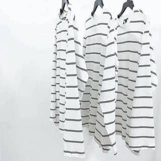T - Shirt của phuongdo31 tại Hồ Chí Minh - 2034287