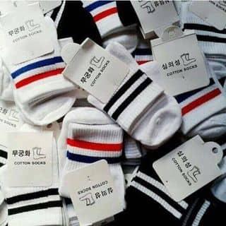 Tất Hàn Quốc kẻ sọc của hanh58 tại 0924.57.29.95, Thành Phố Bến Tre, Bến Tre - 964731