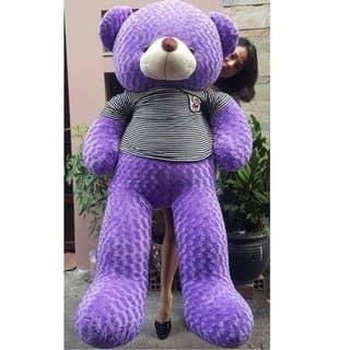 Teddy chân dài của tuyetnhi882 tại Vĩnh Yên, Thành Phố Vĩnh Yên, Vĩnh Phúc - 2115210