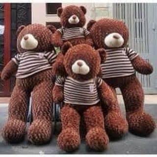 Teddy cho noel của tuyetnhi882 tại Vĩnh Yên, Thành Phố Vĩnh Yên, Vĩnh Phúc - 2100407
