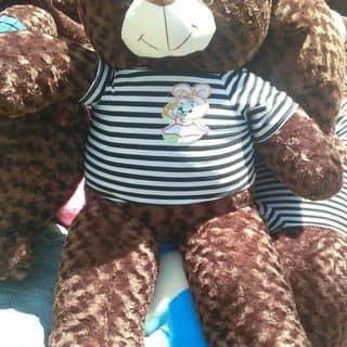 Teddy choco áo len, áo thun - Shop ông bà già của nguyenthimytuyet1998 tại Hồ Chí Minh - 2964570