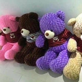 Teddy giá rẻ của minhmayman2 tại Hồ Chí Minh - 2528258