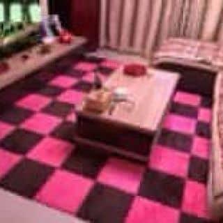 Thảm lông lót sàn của kunsusu tại Hùng Vương, Tiên Cát, Thành Phố Việt Trì, Phú Thọ - 1949353