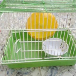 Thanh lý bộ lồng nuôi hamster♥ của ru2theby tại Hồ Chí Minh - 1152625