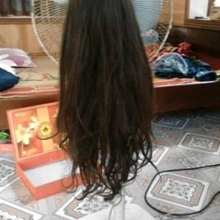 Thanh lý tóc giả của 01684563096 tại Hải Dương - 2054828
