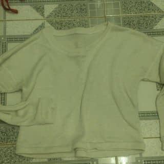 Thanh lý tủ đồ của duonganh145 tại Hồ Chí Minh - 3115788