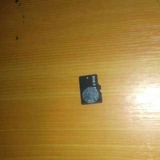 Thẻ nhớ 8GB của tuyetnhinhi1 tại Hồ Chí Minh - 2906625