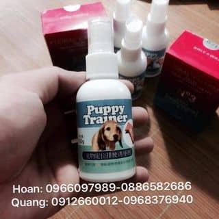 Thuốc xịt vệ sinh đúng chỗ của quanghoanyb tại Yên Bái - 3205075