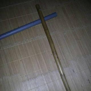 Tieu truc của lacbuoc36 tại Lương Lỗ, Phú Thọ - 3117475