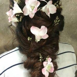 Tóc đẹp của giaanh10 tại Vĩnh Yên, Thành Phố Vĩnh Yên, Vĩnh Phúc - 1297479