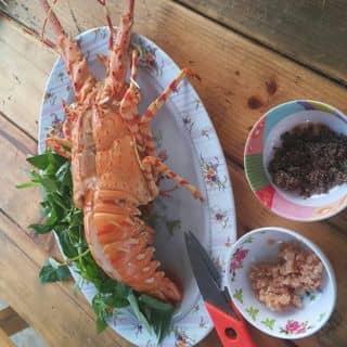 Tôm hùm bỏ lò của tramden13 tại Huyện đảo Lý Sơn, Huyện Lý Sơn, Quảng Ngãi - 327968