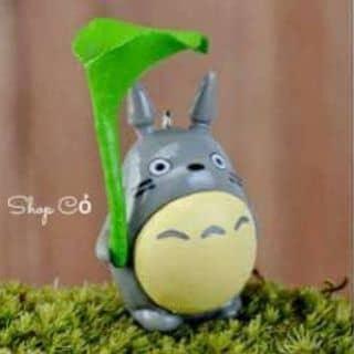 Totoro lá sen tiểu cảnh của thaothuymi tại Cần Thơ - 2045131
