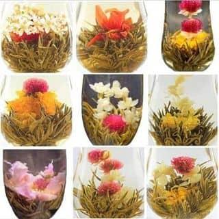 Trà hoa thảo dược của hathiquynhnhu tại Hải Phòng - 2150903