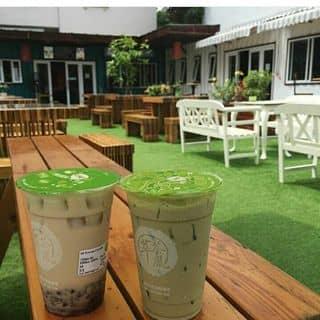 • Trà sữa Cueicha của dinhtruong1502 tại Đường Số 5, An Bình, Thành Phố Biên Hòa, Đồng Nai - 597398