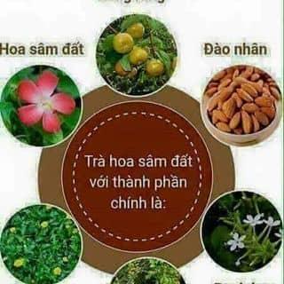 Trà thảo mộc hoa sâm đất của hanhphucshop tại Hồ Chí Minh - 3169613