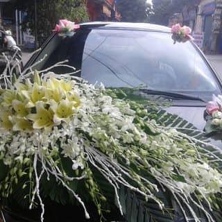 Trang trí xe hoa 0982073884 của ngocminh250 tại Hưng Yên - 2388503