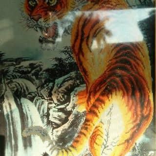 Tranh thêu Con Hổ của hoangtrung264 tại Lạng Sơn - 5374960
