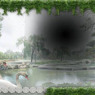 Triển trang quỉnh của butano2 tại Quảng Nam - 2289159